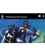 Padi Rescue Diving Course